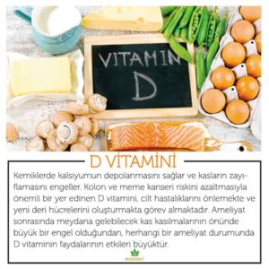 D Vitamini Faydaları