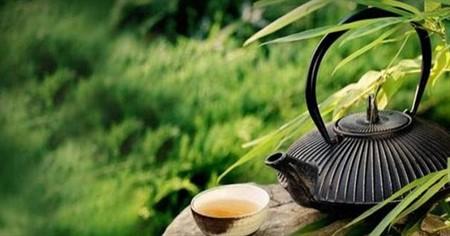 Yeşil çayın faydaları nelerdir ve zayıflatır mı? Yeşil çay içmenin insan sağlığına yararları