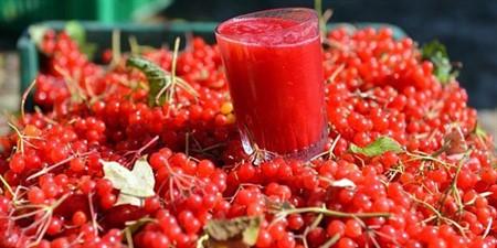 Her derde deva: Gilaburu meyvesinin inanılmaz faydaları!