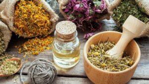 Gribe iyi gelen bitki çayları neler? Soğuk algınlığına iyi gelen çay tarifleri!